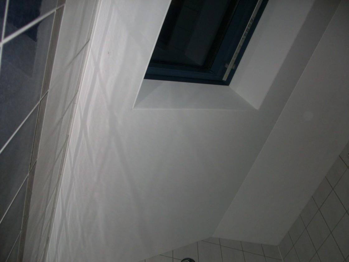 Vonios lubų remontas